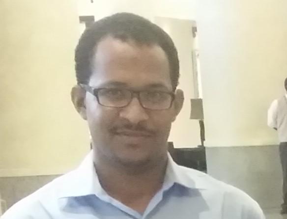 Ayman E Ali