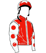 Heart Racing silks